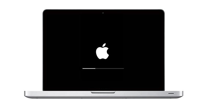 MacBook Apple Logo Stuck Repair Plano